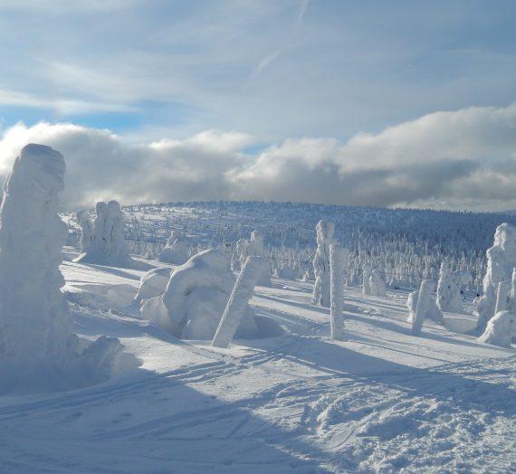 Zimowe Karkonosze: szlak na Szrenicę